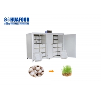 250kg/Day Automatic Food Processing Machines Mung Bean Sprout Machine Manufactures