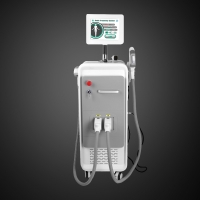 5ms Non Surgical 10.4inch Touch Screen IPL SHR Machine Manufactures