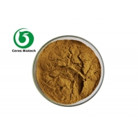 10/1 Chinese Herbal Extract Powder Prunella Vulgaris Extract Powder Manufactures