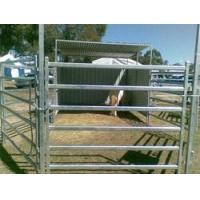 6 Bar Heavy Cattle Panel Manufactures