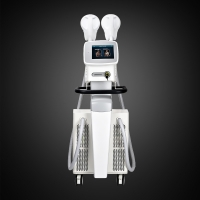 300us Electromagnetic Muscle Trainer Ems Beauty Machine Manufactures