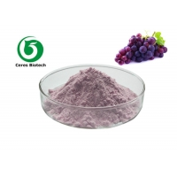 100% Natural Grape Concentrate Juice Powder VC Powdered Juice Concentrate Manufactures