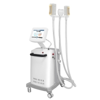 ABS Cryolipolysis Fat Freeze Slimming Machine For Tummy Manufactures