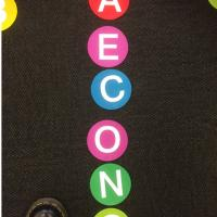 Bright Circle Classroom Carpet Markers , Home Decor Velcro Carpet Spots Manufactures