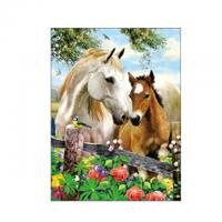 Running Black Horses Image 3D Lenticular Pictures For Advertisement Manufactures