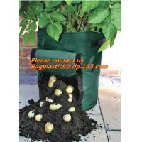 Horticulture, NURSERY, PLANTER, SEED, PLASTIC GROW BAGS, HYDROPONICS, FLOWERPOTS, BLACK Manufactures