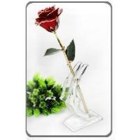 Acrylic Flower Stand (POP-AC15) Manufactures
