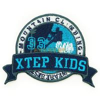 Professional Clothing Embroidered Patches / Iron On Embroidered Badges Manufactures