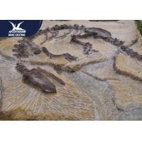 Buy cheap Big Indoor Decorative Fake Dinosaur Fossil Waterproof And Sunproof 1 Year from wholesalers