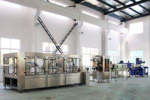 Bottle Rinsing SUS304 Automatic Water Filling Machine Manufactures