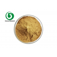 Skin Care Herbal Extract Powder Malva Sylvestris Leaf Extract Manufactures