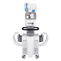 Buy cheap Body Contouring EMS Slimming Machine 220V 50 60Hz from wholesalers