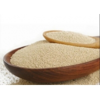 Low Sugar 99% Dried Active Baking Yeast Functional Food Ingredients Manufactures