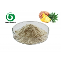Beverage Flavoring Agent Organic Pineapple Juice Powder 10/1 Water Soluble Manufactures