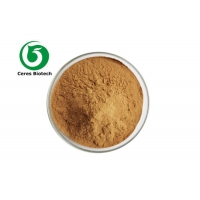 Fructus Viticis Chasteberry Fruit Extract Agnuside Vitexin 5% Chaste Tree Extract Manufactures