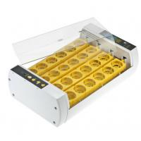 China Durable Operation Simple Poultry Egg Incubator , Fully Automatic Egg Incubator on sale