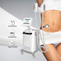 Belly Burning High Efficient Cryolipolysis Slimming Machine Manufactures
