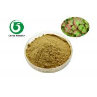 High Efficiency Epimedium Extract Powder Icariin 5% For Enhancing Male Sexuality Manufactures