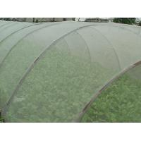 Green House Using Anti-insect screen 40x25 mesh,PE Plant Anti Insect Net,Mosqutio Screen Manufactures