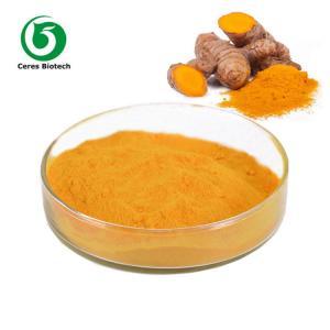 Natural Turmeric Curcumin Extract 95% for Anti-Inflammatory and Antioxidant Manufactures