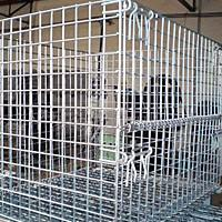Wire Mesh Containers Manufactures