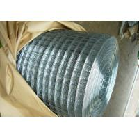 Bright G.I. Welded Wire Mesh Manufactures