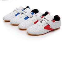 Custom Boxing Kung Fu Tai Chi Taekwondo Sport Gym Shoes colour white blue red size 27-45 for adult and children Manufactures