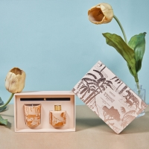 Orange Decoration Scented Candle Long Lasting Home Fragrance Gift Set Manufactures