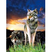 0.6mm PET+157g Coated Paper 3D Lenticular Pictures / 3D Lenticular Wall Art Manufactures