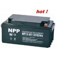 Emergency Battery NP12-65Ah (UL, CE, ISO9001, ISO14001) Manufactures