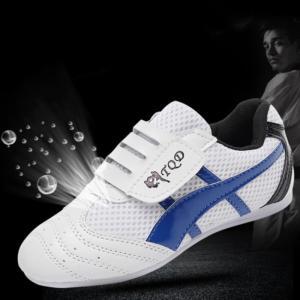 2020 new cheap Sports martial arts, wholesale price sports shoes taekwondo shoes Blue colour size 27-45 Manufactures