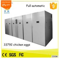 China High Quality HT-33792 egg incubator china egg incubator solar energy egg hatcher on sale