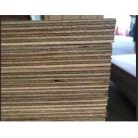 Marine Grade Commercial Plywood Okoume Face / Back With Phenolic Glue Manufactures