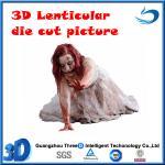 die cut13D lenticular picture(stock) Manufactures