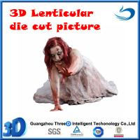 die cut13D lenticular picture(stock) Manufactures