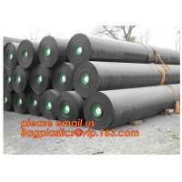 2mm HDPE reinforced polypropylene geomembrane for landfill,Geomembrane fish farming Pond Liner Hdpe Geomembrane BAGPLAST Manufactures