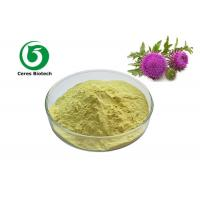 Liver Protection Silymarin Milk Thistle Extract Powder Anti Oxidant Iso Approved Manufactures