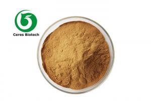 Natural Herbal Extract Powder Polygonatum Sibiricum Extract Powder 80 Mesh Manufactures