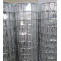 """Hot-dipped Galvanized Welded Wire Mesh   3""""X2"""",2.7mm,1.2-1.8m Manufactures"""
