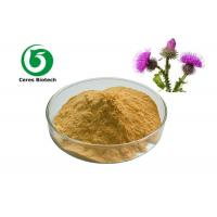 Acetone Extraction Pure Milk Thistle Extract Silymarin Hplc 55% Pharmaceutical Manufactures