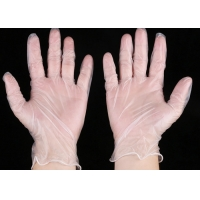 Powder Free Hand Clear Latex Nitrile Vinyl PVC Gloves Manufactures
