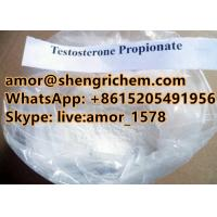 super strong effect Testosterone Propionate white color raw material top quality Manufactures