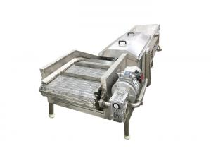 300kg/h Food Precooking Steam Vegetable Blanching Machine Manufactures
