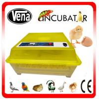China Mini egg incubator 48pcs/ quail incubator mini poultry incubator machine for hatching eggs on sale