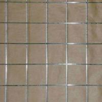 1/4-inch Electro-galvanized Welded Wire Mesh Manufactures