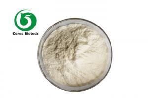 Anti Oxidant Flavouring Fruit Juice Powder Honey Dew Melon Powder Manufactures