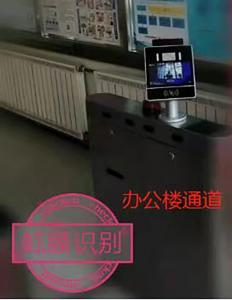 Iris Biometrics Facial Recognition System with temperature detector Manufactures