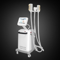 Cellulite Reduction Cryolipolysis Slimming Machine With CE Manufactures