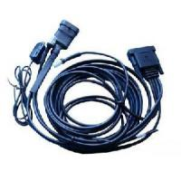 Low-Speed Vehicle Wire Harness (AU-314) Manufactures