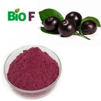 China Concentrate Fruit Extract Powder ,  Organic Acai Powder Powerful Antioxidant on sale
